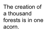 The creation of a thousand forests is in one acorn.   Ralph Waldo Emerson
